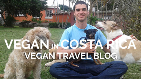 Vegan Traveler Blog - Vegan in Costa Rica - Vegan Travel