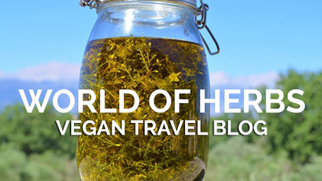 Vegan Traveler Blog - World of Herbs - Vegan Travel