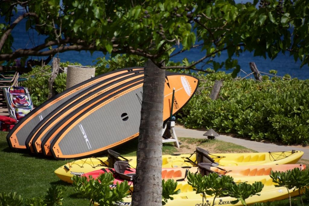 2016:06:01 Kaanapali Maui Hawaii Vegantravel SUP Paddle Boards Kayaks