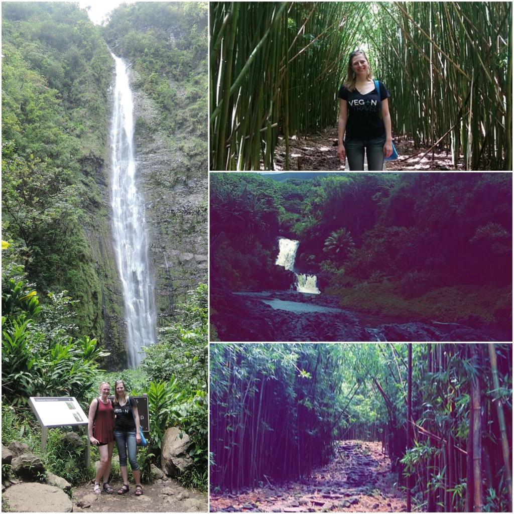 Haleakala National Park Collage Vegantravel