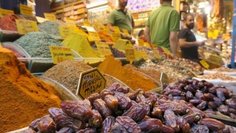 Vegan Food & Culture in Istanbul, Turkey