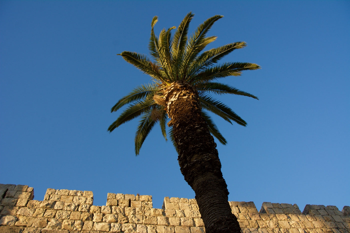 Ottoman Walls (build in the 1500's) surround the Old City of Jerusalem
