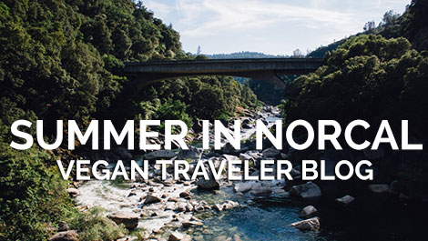 Vegan Traveler Blog - Summer in NorCal - Yuba River - Vegan Travel