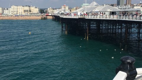 First Full Day in Brighton!