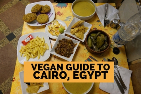 Vegan Guide to Cairo, Egypt