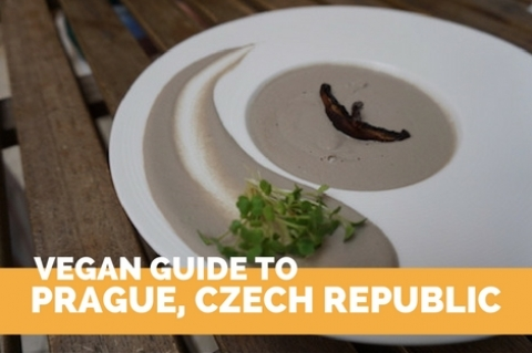 Vegan Guide to Prague, Czech Republic