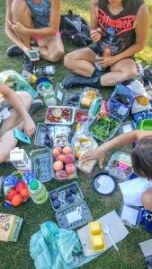 #whatveganseat ! Perfect vegan picnic by the Falls!