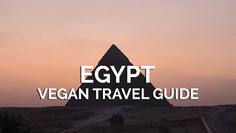 Egypt Vegan Travel Guide