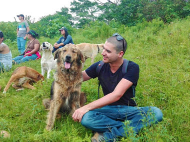 The Land of the Stray Dogs