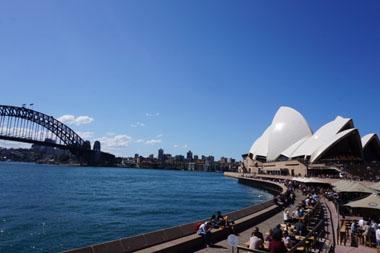 Favorite Vegan Spots & Activities in Sydney!