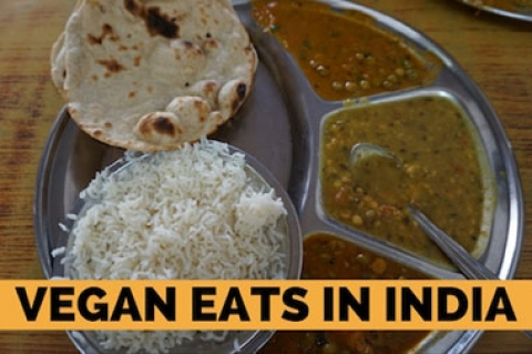 Vegan Eats in India
