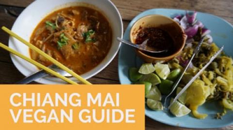 Chiang Mai Vegan Guide
