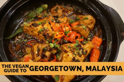 Vegan Guide to Georgetown, Penang
