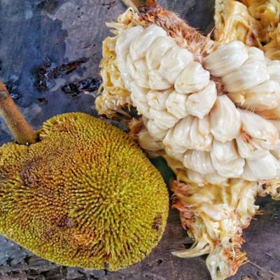 Madayaw Fruit Festival Marang