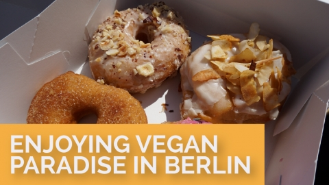 Enjoying Vegan Paradise in Berlin