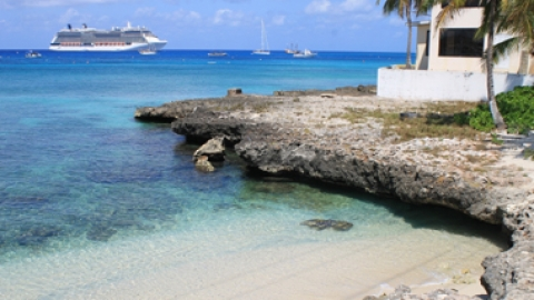 Vegan Cruise: Should You or Shouldn't You?