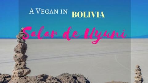 A Vegan in Bolivia: My experience in the Uyuni Salt Flats