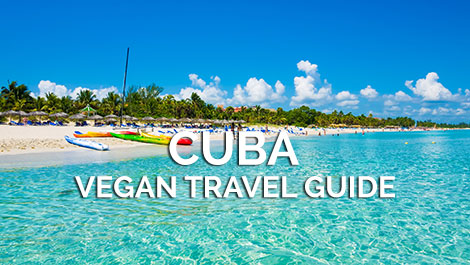 Cuba Vegan Travel Guide