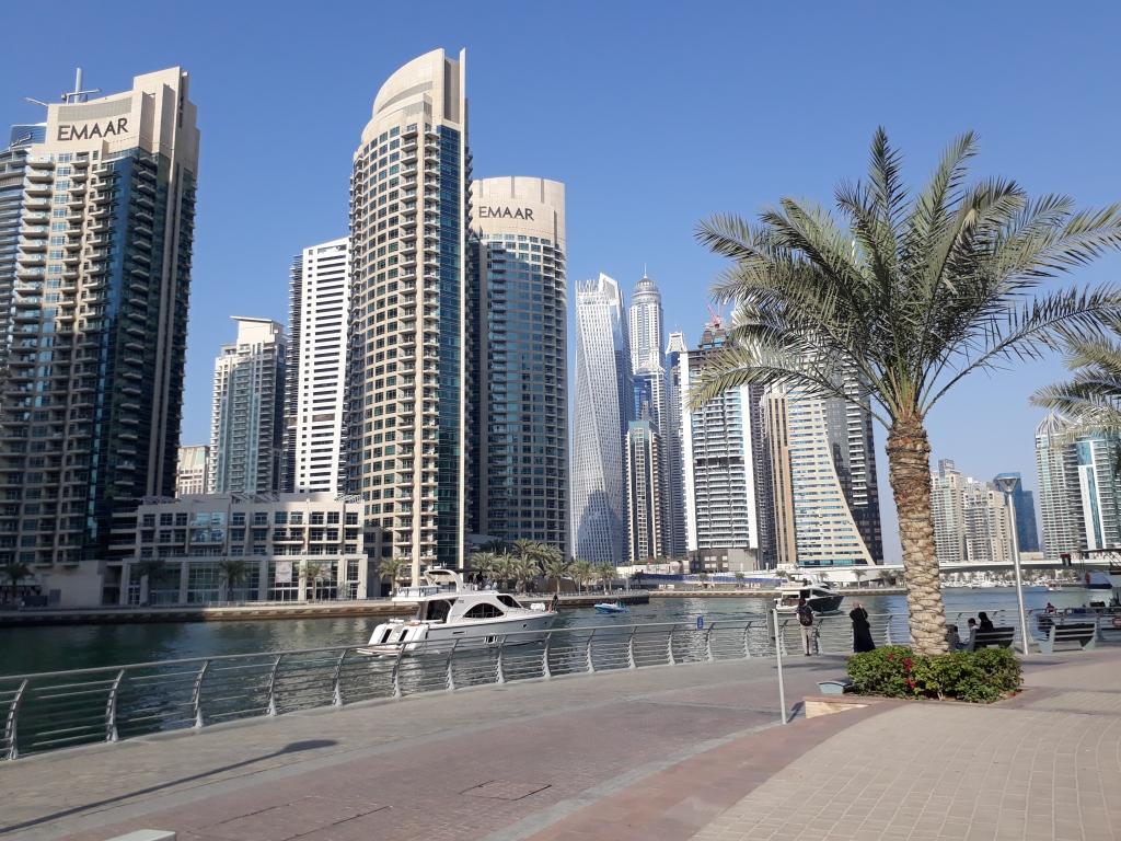 Vegan Dubai