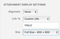 Sizing your photo when adding it to your blog