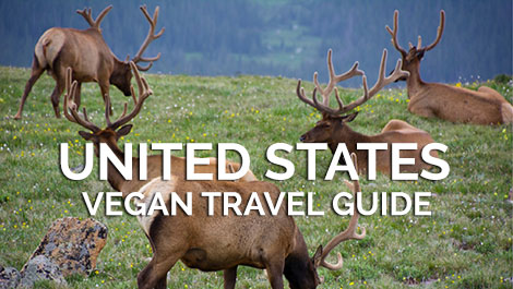 United States Vegan Travel Guide