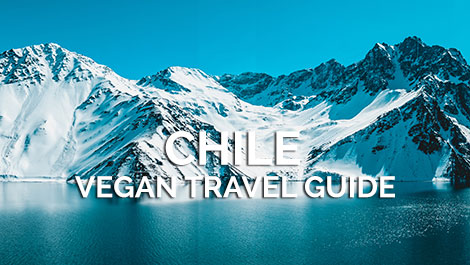 Chile Vegan Travel Guide