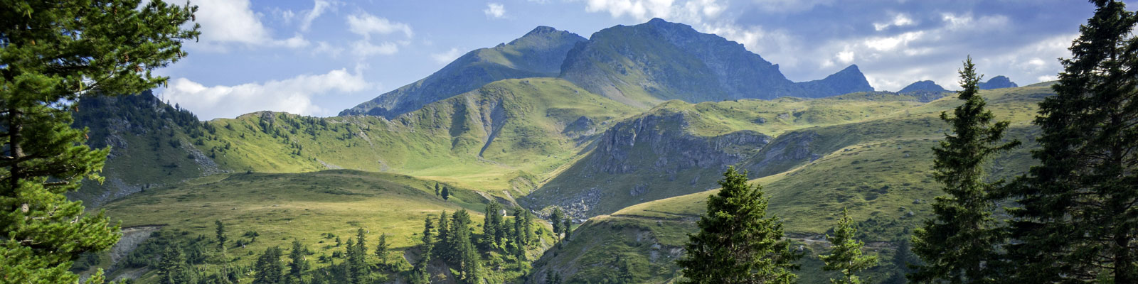 Kosovo-Vegan-Travel-Guide-1600x