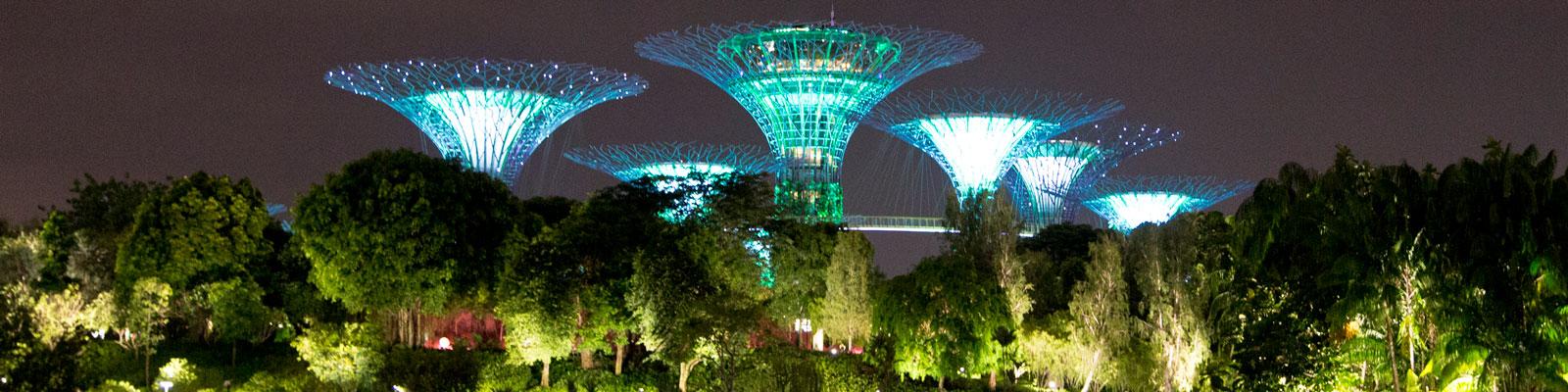 Singapore Supertree Grove