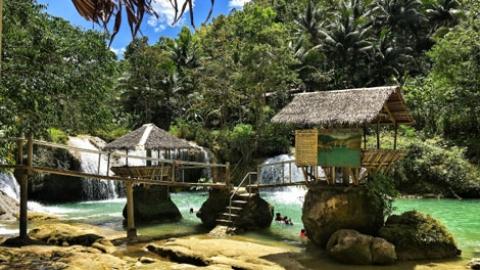 Panglao & Bohol // Vegan Travel Guide || Philippines
