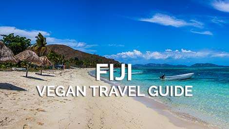 Fiji Vegan Travel Guide