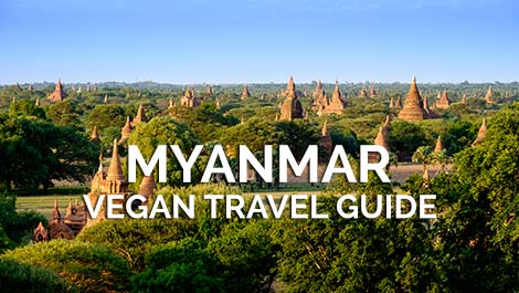 Myanmar Vegan Travel Guide